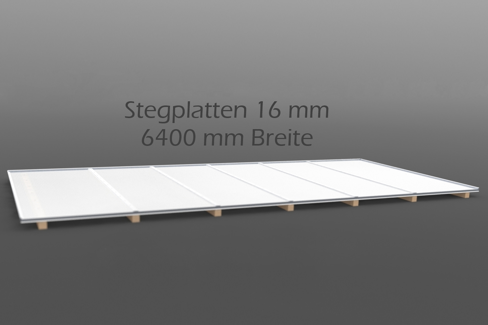 Dachhaut Stegplatten 16 mm in 6400 mm Breite