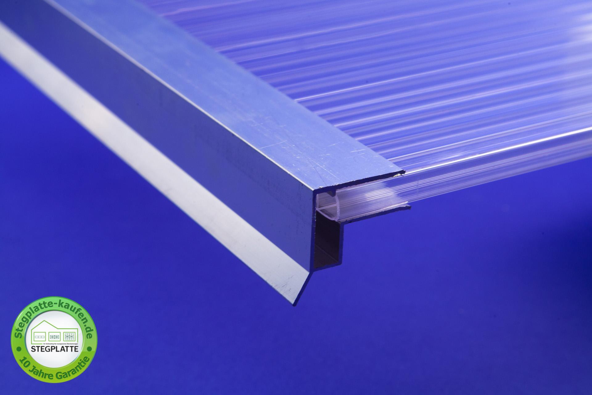 Alu Abschlussprofil große Tropofkante 10 mm